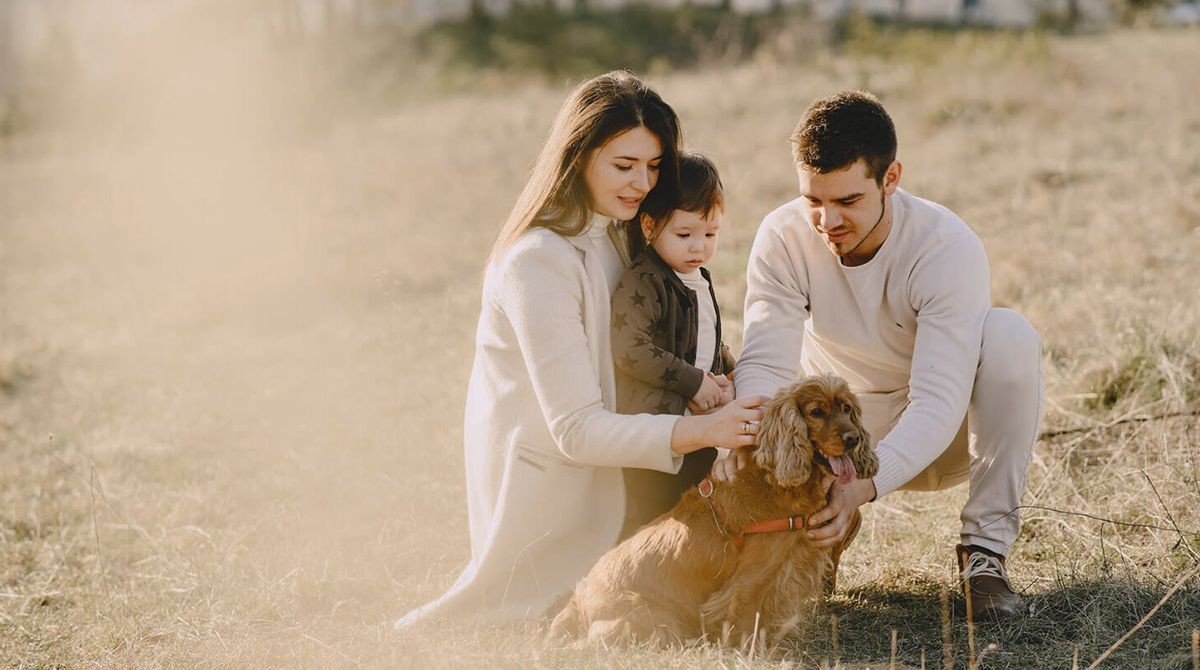 Comment faire pour que ses animaux domestiques s'entendent bien avec bébé ?